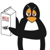 A Few Problems I Have with My Roommate, Who Happens to be a PenguIn
