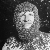 A man with three month's worth of bee-beard growth.